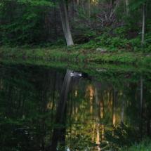 reflection-pond